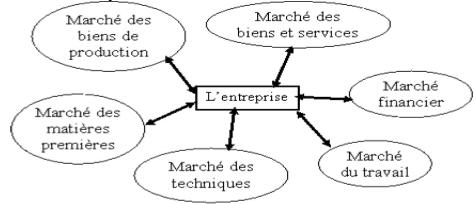 approche systémique de l'entreprise