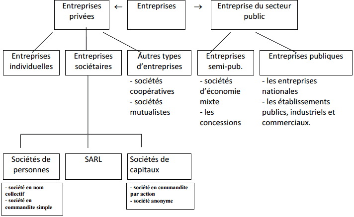 la classification juridique des entreprises