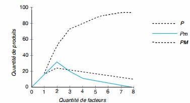 la courbe de fonction de production