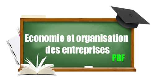 Cours d'économie et organisation des entreprises