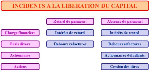 liberation capital résumé