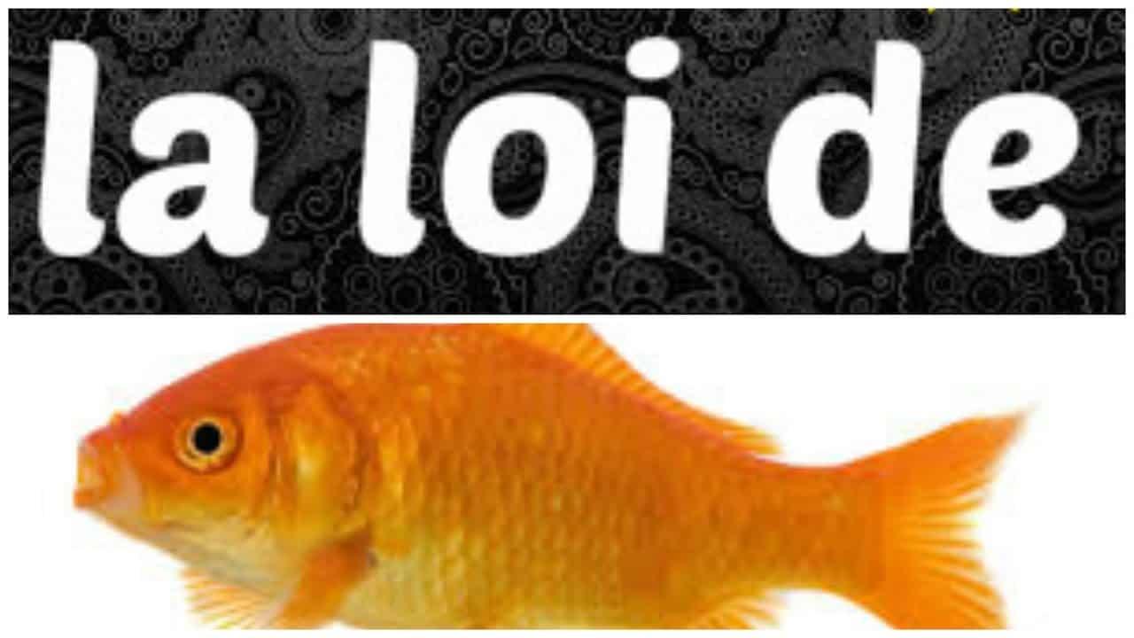 cours de loi de poisson