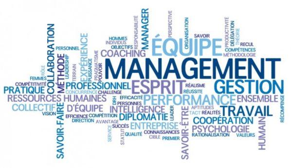 définition et principes du management