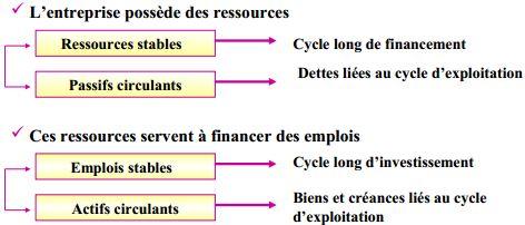 structue du bilan fonctionnel